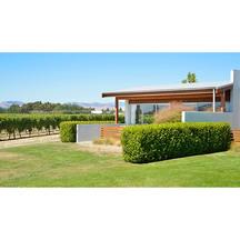 Marlborough vintners exterior  105271