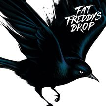 Fat Freddy's Drop - Blackbird CD