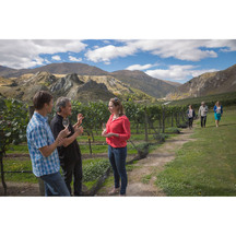 Scenic Winery Tour & Tastings in Queenstown