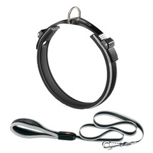 Ergocomfort Dog Collar & Lead Grey