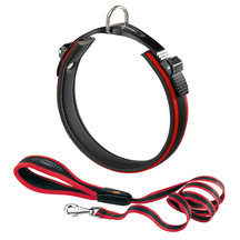Ergocomfort Dog Collar & Lead Red