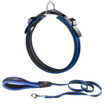Ergocomfort Dog Collar & Lead Blue