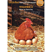 Lifestyle Block: How to Care for Your Poultry Magazine - ...