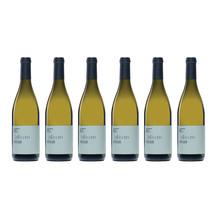 2014 folium vineyard reserve sauvignon blanc
