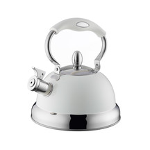 Typhoon Stove Top Kettle