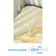 Swanndri Pure Wool Protect-a-Cot Blanket - Natural (Donat...