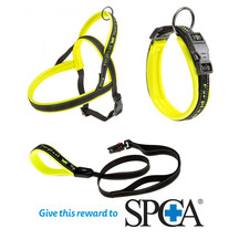 Ferplast Sport Dog Collar, Lead and Harness Yellow (Donat...
