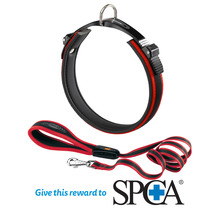 Ergocomfort Dog Collar & Lead Red (Donation)