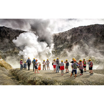 Live Marine Volcano Tour of White Island