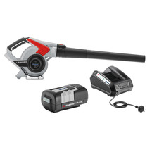 Energy Flex 42V Blower with Battery and Charger