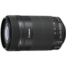 Canon EF-S 55-250mm F/4-5.6IS STM Telephoto Lens