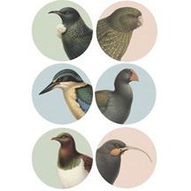 Native Bird Placemats