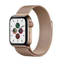 Apple Watch S5 GPS+LTE - 40mm Gold Stainless Steel Case w...