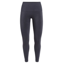 Icebreaker Womens Motion Seamless High Rise Tights Panther